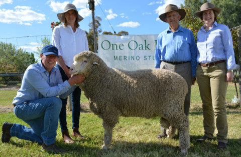 Alistair and Natasha Wells holding the top priced ram sold for $6500 to Dick and Caroline Gavel of