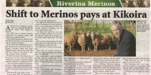 Shift to Merinos pays